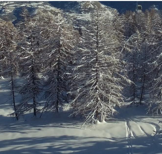Купить ски-пасс в дополнение к аренде жилья
