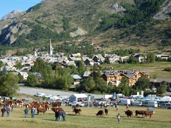 Le bourg du Monêtier les Bains, la fopire aux bestiaux