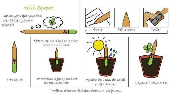 crayonplantable01-1852541